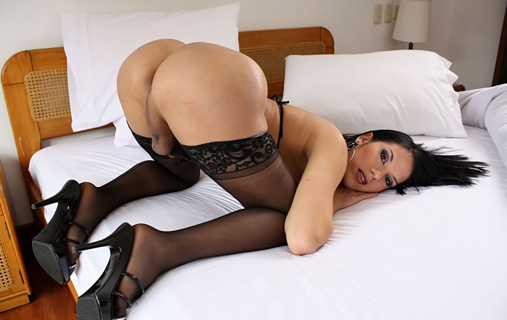 big-booty-ladyboy-face-down-as-upbig-booty-ladyboy-face-down-as-up